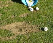 training divot